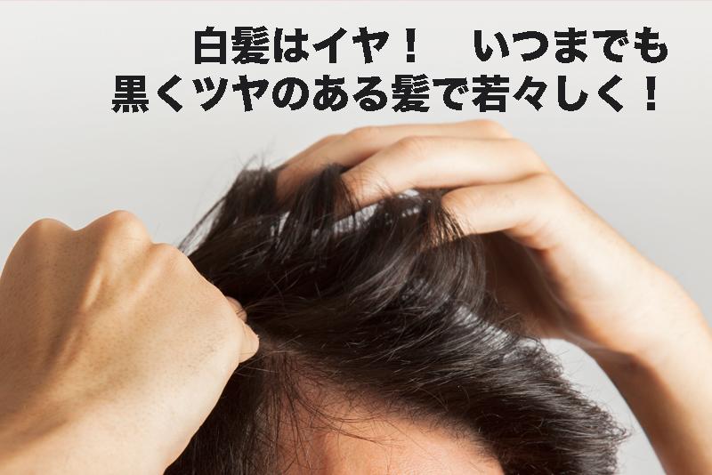 【急激に老化!? 原因は白髪!】対処法は? まずは美容院でリサーチ!