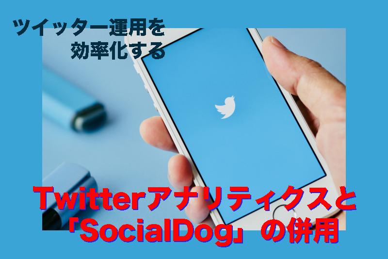 【ツイッター運用を効率化するSocialDogの使い方】Twitterアナリティクスと併用してフォロワーを増加させる!