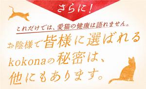 「日本犬猫の健康を考える株式会社」による猫ちゃん専用、腸内サプリメント