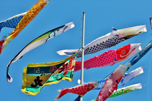 【333匹こいのぼり&さんまのぼり】5月6日まで東京タワー恒例「端午の節句」企画&全国の変わったこいのぼり