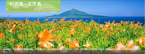 「礼文島旅行」が充実している阪急交通社のツアーは、絶景とグルメが堪能できます!