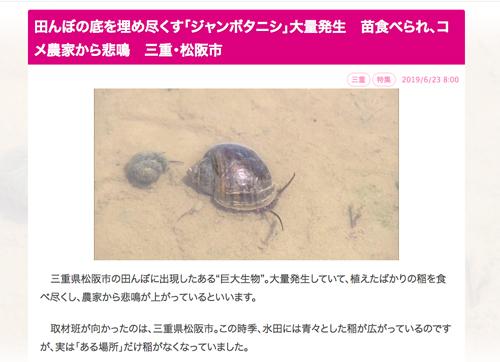 中京テレビ【ジャンボタニシが大量発生】野生化した外来種が稲を食い荒らす!
