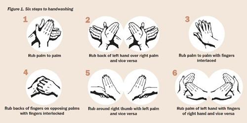 手洗い方法は、6ステップが王道!