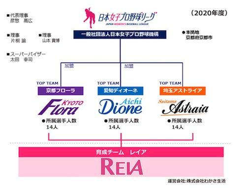 一般社団法人 日本女子プロ野球機構
