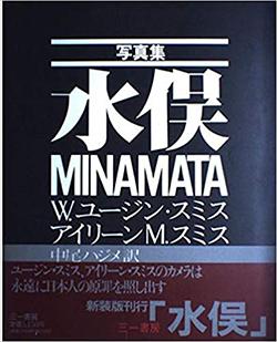 ミナマタ (映画)