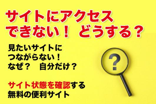 【サイトにアクセスできない! なぜ? 自分だけ?】サイト状態を確認する無料の便利サイト